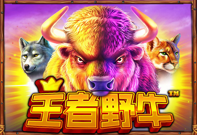 Check out SBOBET's newest slot game, the Buffalo King, which offers extravagant prizes at home